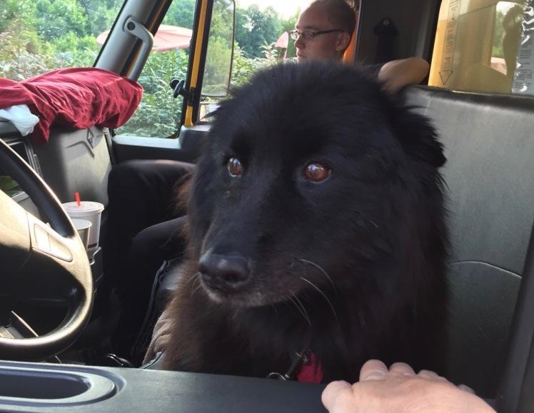 Precious the Road Dog