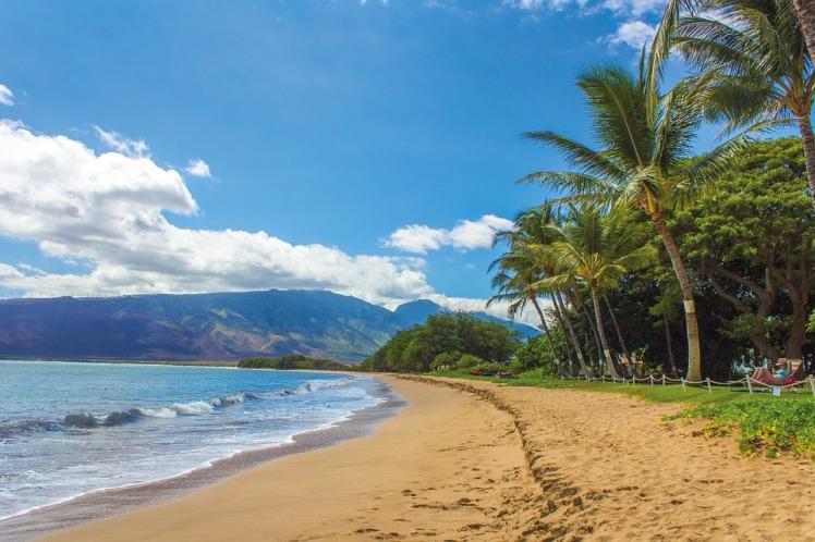 tlt-maui-beach